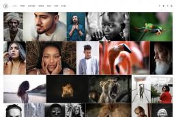 demo content homepage Portfolio Gallery Uncode min uai